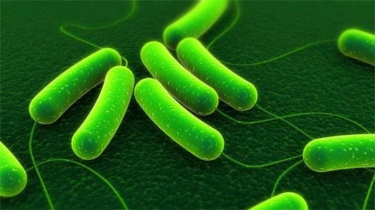 Uốn ván là bệnh nguy hiểm gây ra bởi vi khuẩn.