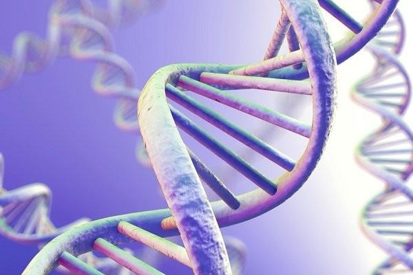 Ung thư máu có di truyền không ?