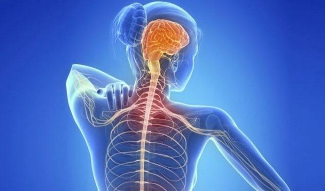 Bệnh đa xơ cứng ảnh hưởng tới viêm thần kinh thị giác