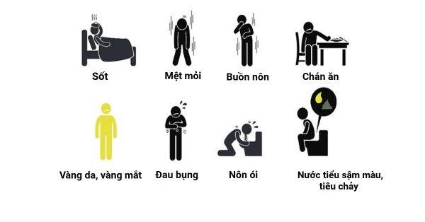 Các triệu chứng của viêm gan cấp.
