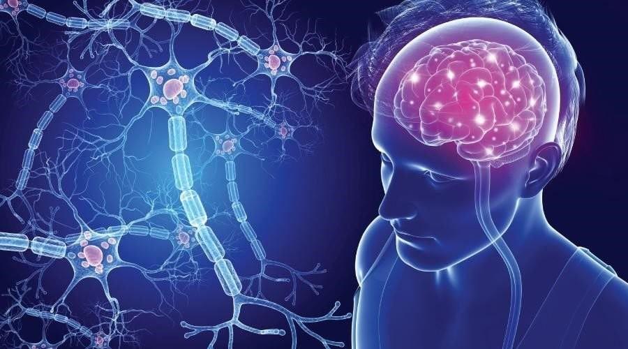 Bệnh đa xơ cứng ảnh hưởng đến hệ thần kinh trung ương