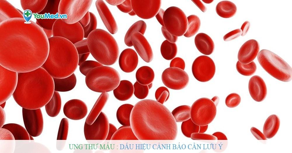 Ung thư máu : Dấu hiệu cảnh báo cần lưu ý