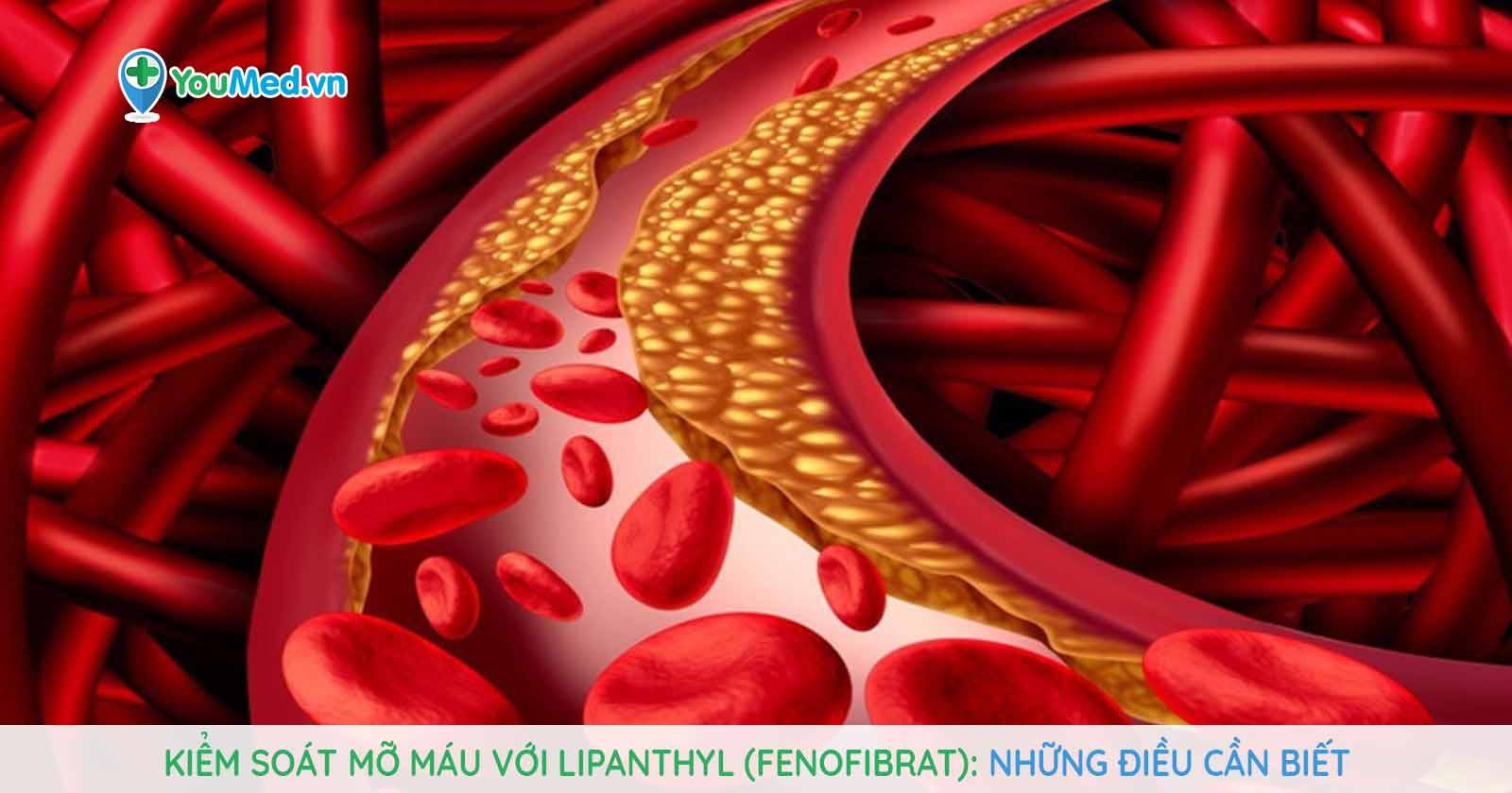 Kiểm soát mỡ máu với Lipanthyl (fenofibrat): Những điều cần biết