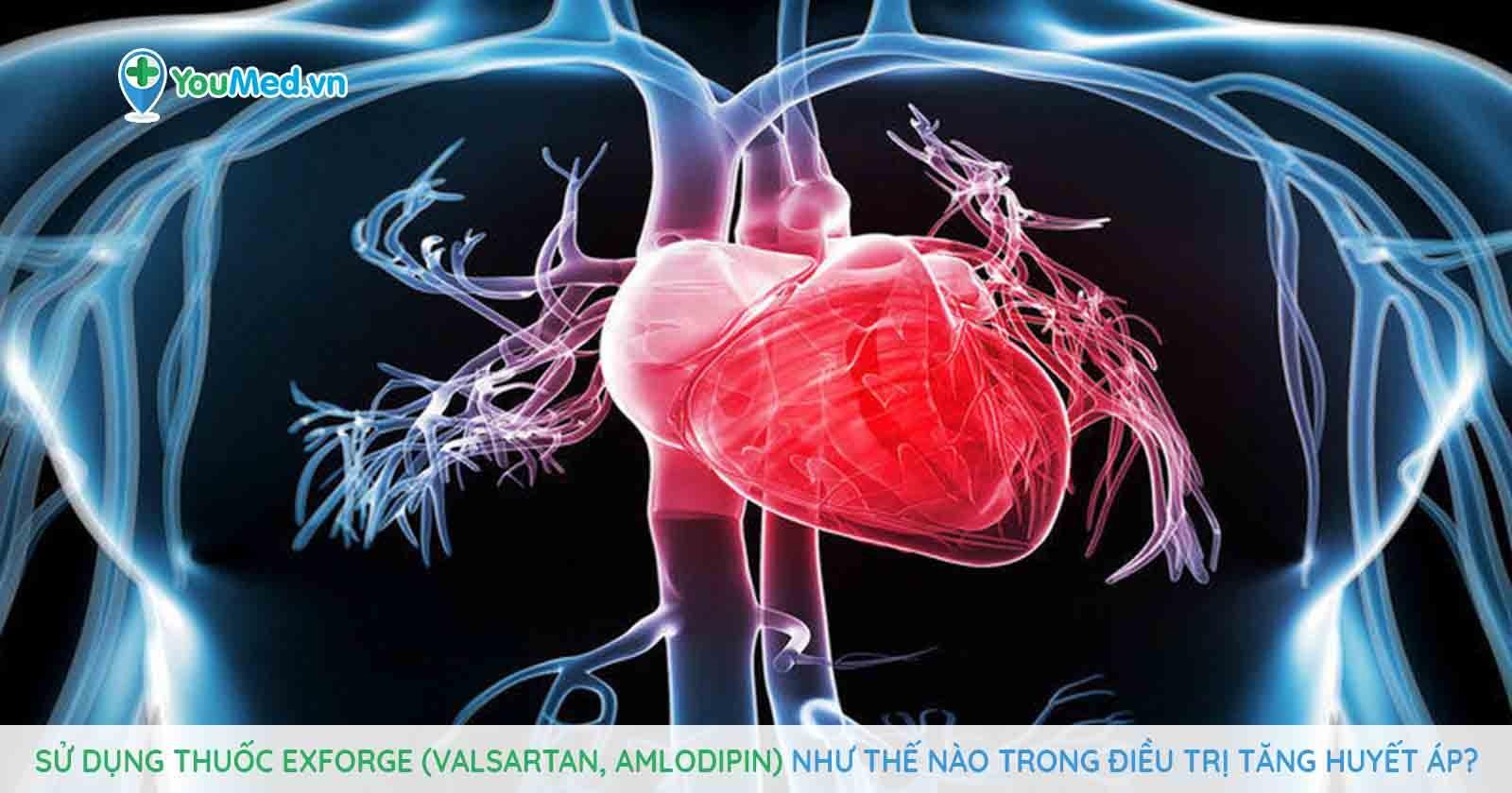 Sử dụng thuốc Exforge (valsartan, amlodipin) như thế nào trong điều trị tăng huyết áp?