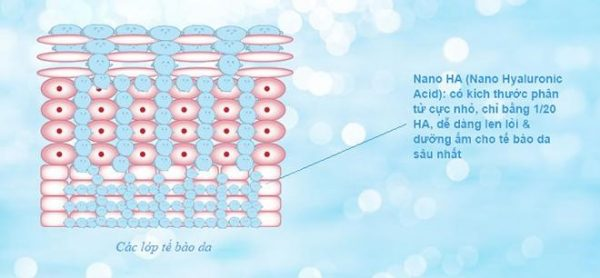 Cơ chế cấp ẩm của Hyaluronic Acid
