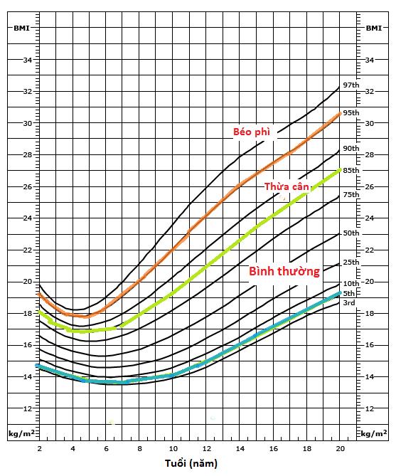 Biểu đồ tăng trưởng BMI ở trẻ nam
