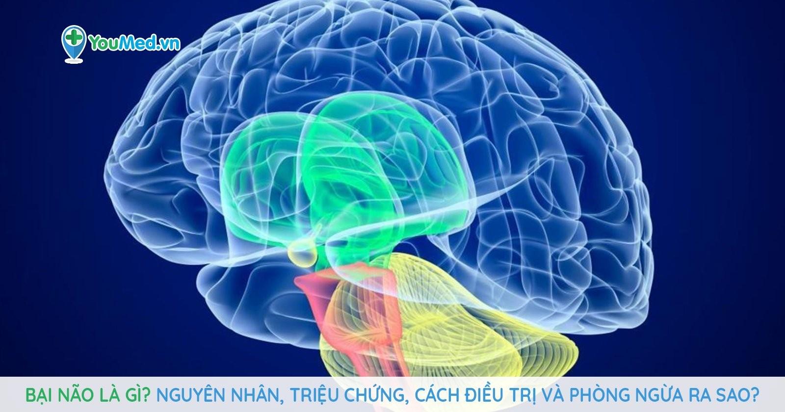 Bại não là gì? Nguyên nhân, triệu chứng, cách điều trị và phòng ngừa ra sao?