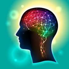 Sử gia tăng các chất dẫn truyền thần kinh làm tăng hoạt động trong não.