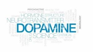 """Cocain làm tăng thời gian tác động của Dopamine, từ đó gây nên came giác """"phê""""."""