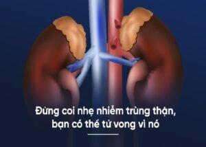 Nhiễm trùng thận là một bệnh thường gặp