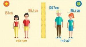 Chiều cao trung bình của nam, nữ Việt Nam so với thế giới