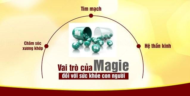 vai trò của Magie