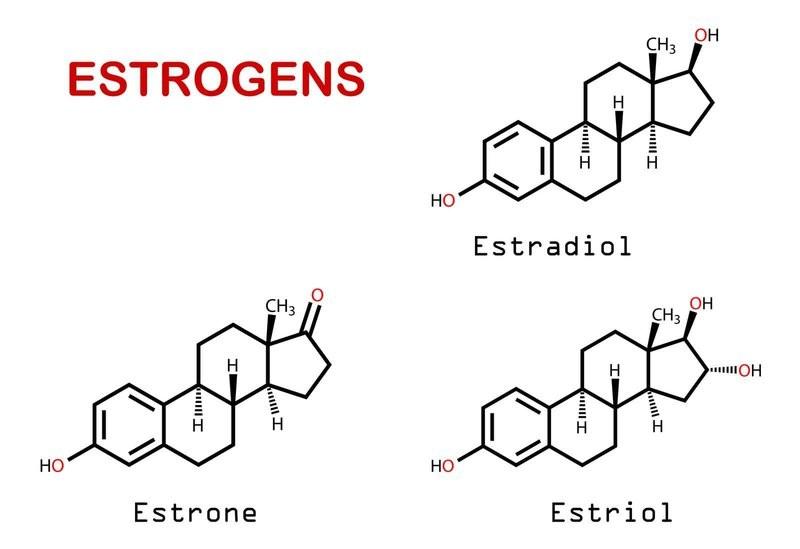 Hormon Estrogen là một trong những nguyên nhân giả định gây ra bệnh