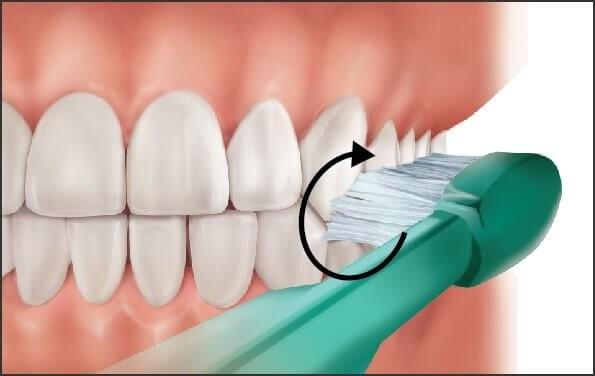 chải răng đúng cách pp fones