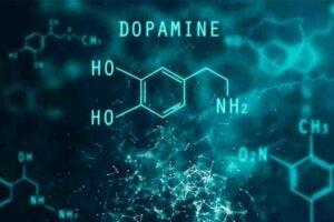Giống như amphetamine, cathinone trong Khat cũng tác động lên thụ thể Dopamine.