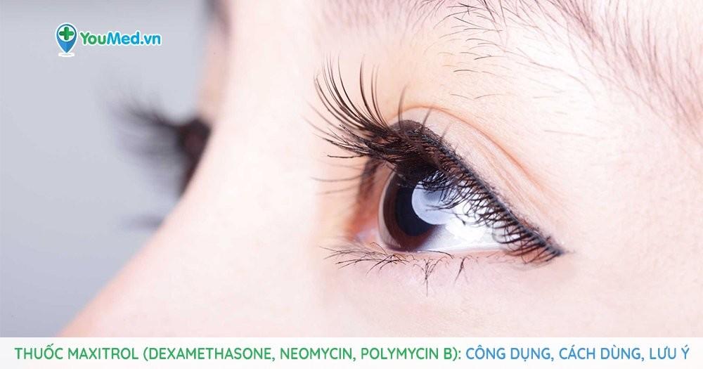 Thuốc điều trị bệnh viêm mắt Maxitrol