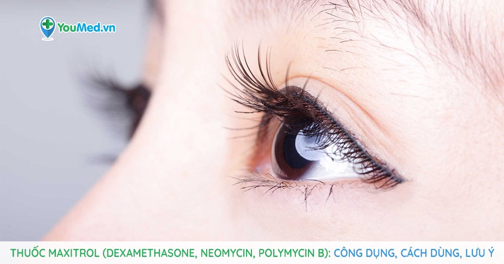 Thuốc điều trị bệnh viêm mắt Maxitrol (dexamethasone, neomycin, polymycin B)
