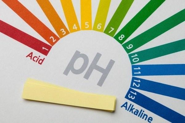 Độ pH ở cơ quan sinh dục bị thay đổi - Bị ngứa vùng kín khi mang thai