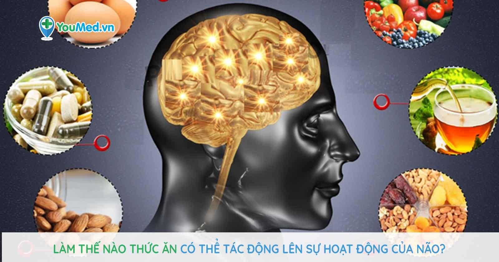 Làm thế nào thức ăn có thể tác động lên sự hoạt động của não?