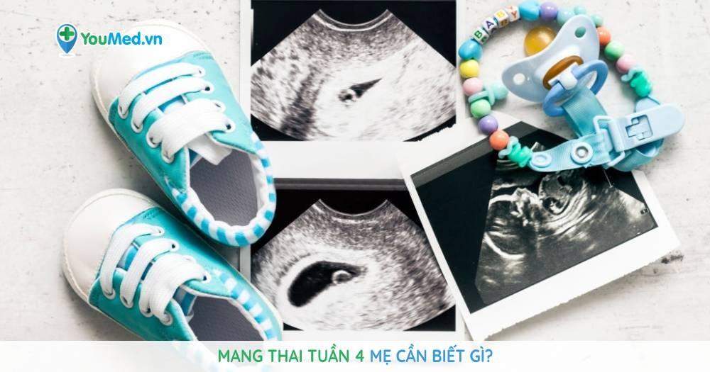 Mang thai tuần 4: Mẹ cần biết gì?