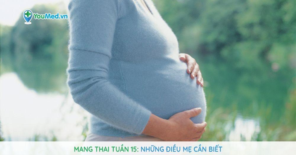 Mang thai tuần 15: Những điều mẹ cần biết