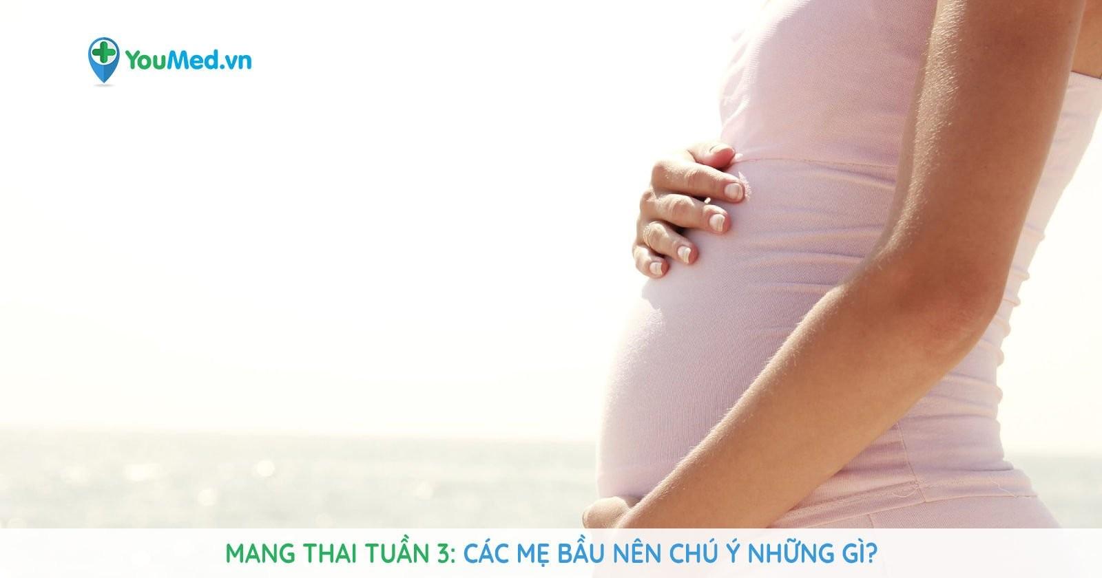 Mang thai tuần 3: Các mẹ bầu nên chú ý những gì?