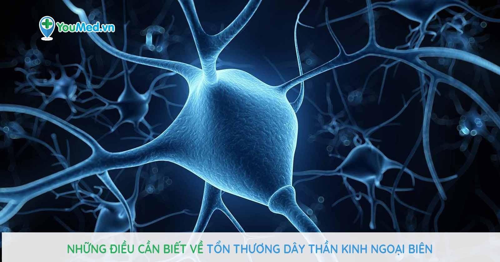 Những điều cần biết về Tổn thương dây thần kinh ngoại biên