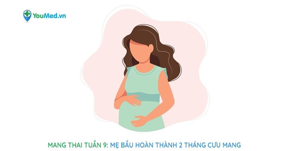 Mang thai tuần 9: Điểm nhấn mẹ bầu cần lưu tâm