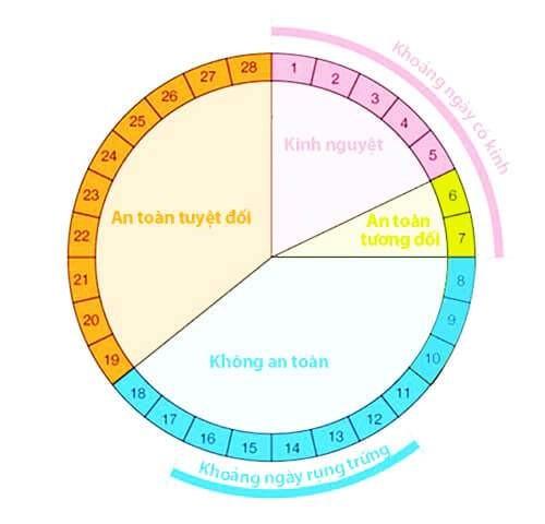 Vòng tròn tránh thai