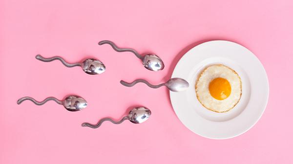 cơ sở của tránh thai bằng tính ngày là nhằm cho trứng không gặp được tinh trùng