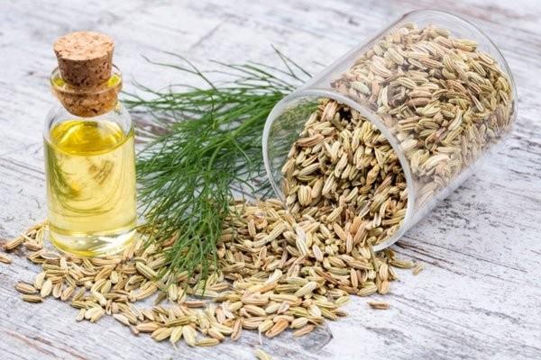 Tinh dầu Hồi hương chữa được nhiều bệnh