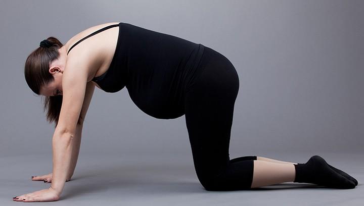 yoga tư thế con mèo