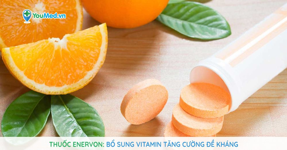 Thuốc Enervon: Bổ sung vitamin tăng cường đề kháng