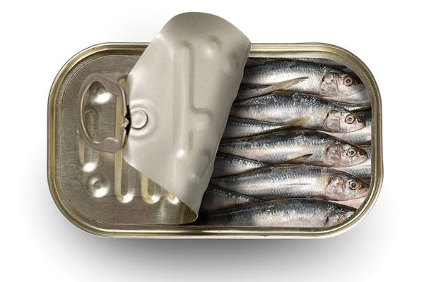 Cá mòi có hàm lượng vitamin D tự nhiên cao.
