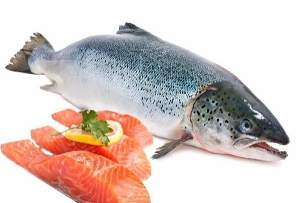 Cá hồi giúp tăng kích thước cậu nhỏ