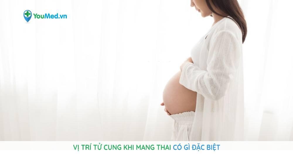 Vị trí tử cung khi mang thai có gì đặc biệt hay không?