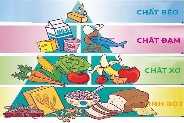 Thành phần dinh dưỡng cho trẻ 3 tuổi