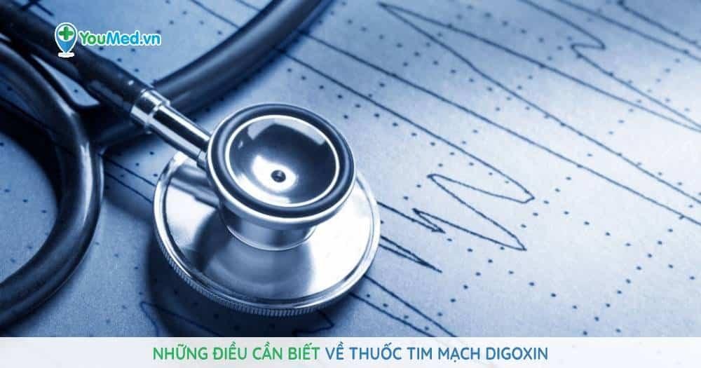 Những điều cần biết về thuốc tim mạch Digoxin