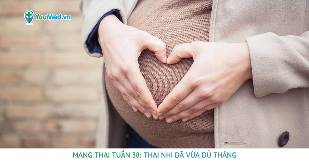 Mang thai tuần 38: Thai nhi đã vừa đủ tháng