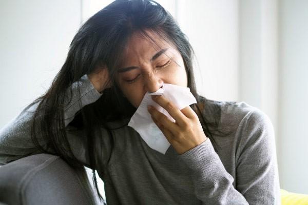 Tang diệp có thể hỗ trợ hạ sốt, giảm ho