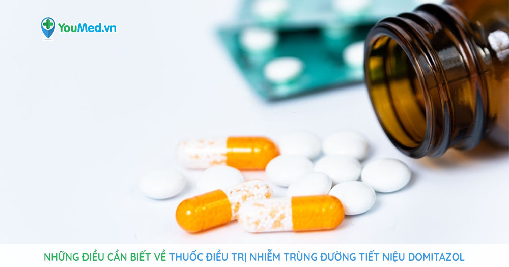 Thuốc điều trị nhiễm trùng đường tiết niệu Domitazol