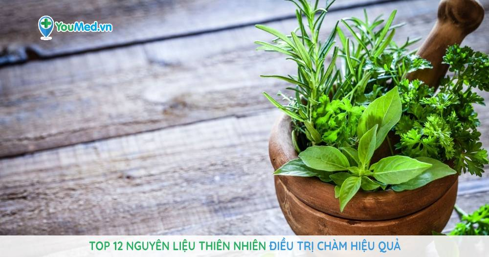 Top 12 nguyên liệu thiên nhiên điều trị chàm hiệu quả