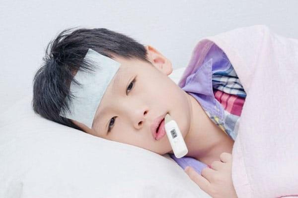 Trúc diệp có tác dụng hạ sốt