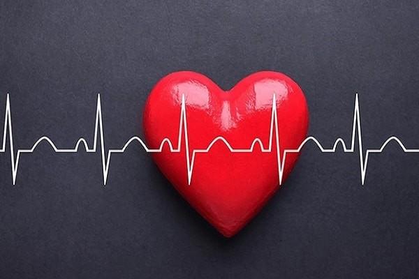 Adrenaline làm tăng nhịp tim