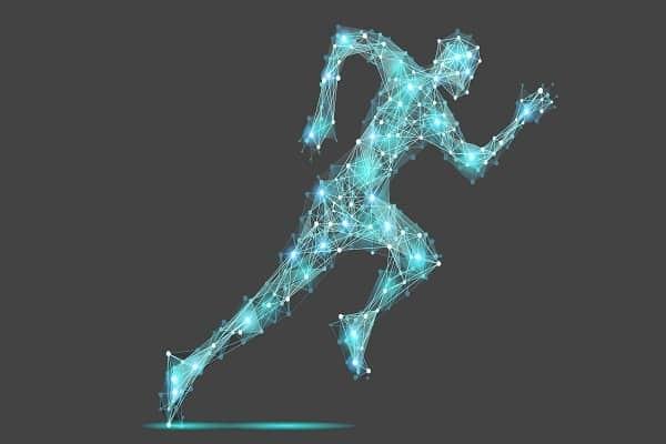 Dị hóa giải phóng năng lượng cho cơ thể hoạt động - dị hóa là gì