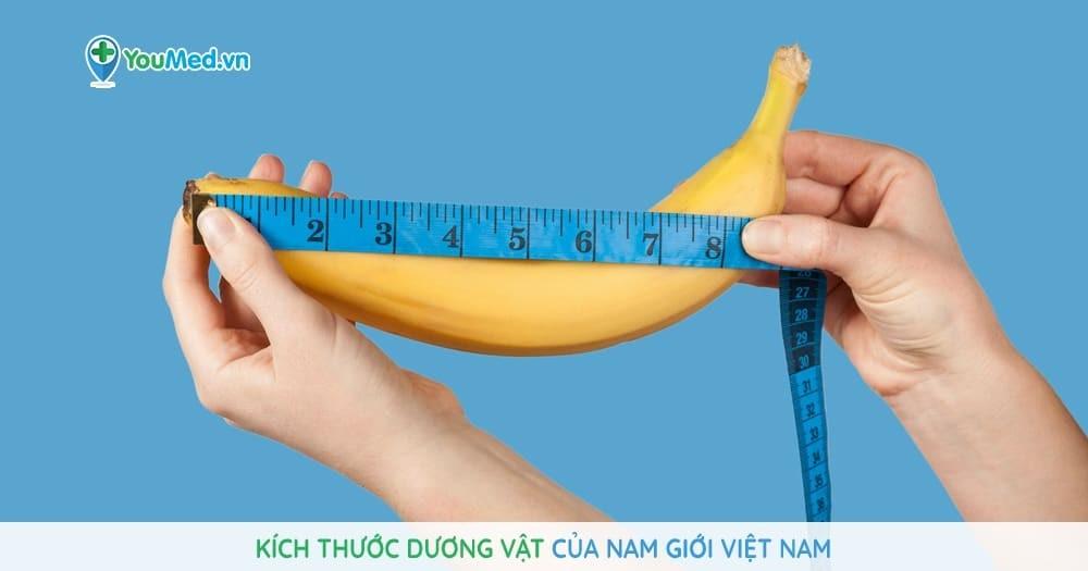 Kích thước dương vật của nam giới Việt Nam