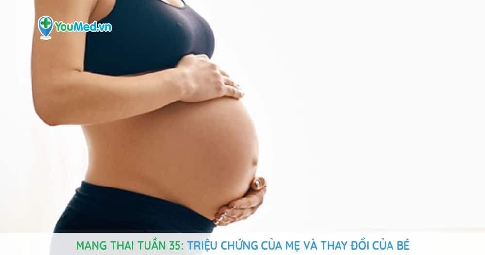 Mang thai tuần 35: Triệu chứng của mẹ và thay đổi của bé