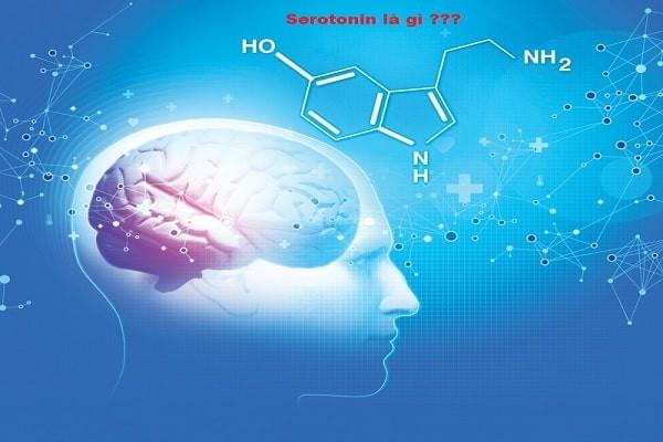 Chất Serotonin trong cơ thể con người
