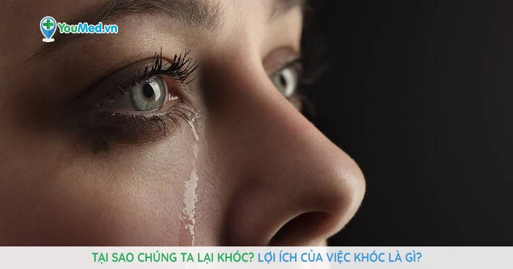 Tại sao chúng ta lại khóc? Lợi ích của việc khóc là gì?