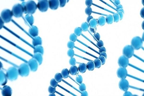 Tăng Acid uric máu có thể do di truyền